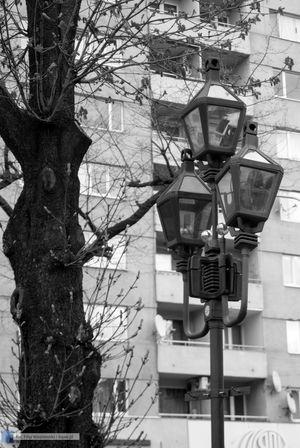 ZPiT PW na Ukrainie - fotorelacja - 122 zdjęcie w galerii.
