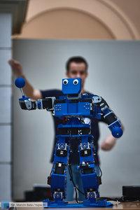 Robomaticon 2019 - 45 zdjęcie w galerii.